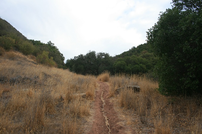 Foothill Trail, Los Padres National Forest, Ojai, CA