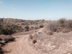 La Vida Trail, Chino HIlls State Park