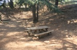 Picnic table, Franklin Canyon Park