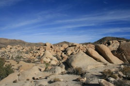 Field of granite boulders, Arch Rock Nature Trail, Joshua Tree National Park