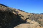 Junction on the Grape Avenue Trail, Crafton Hills, Yucaipa, CA