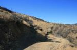 Junction on the Grape Avenue Trail, Crafton Hills, Yucaipa, CA