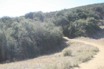 Grape Avenue Trail Head, Crafton Hills, Yucaipa, CA