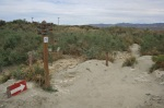 Trail junction, McCallum Nature Trail, Coachella Valley Preserve