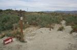 Trail junction, McCallum Nature Trail, Coachella Valley Preserve