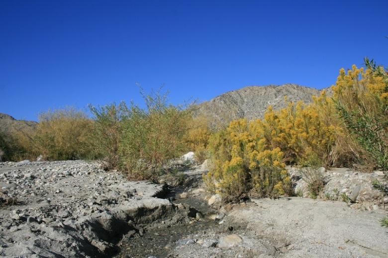 Mission Creek, San Bernardino Mountains, CA