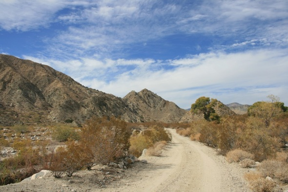 Dirt road leading toward the mountains, Mission Creek Preserve