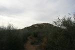 Trail to Oakzanita Peak, Cuyamaca Rancho State Park, San Diego County, CA