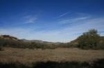 Meadow in the Oak Oasis Open Space Preserve, Lakesisde, CA