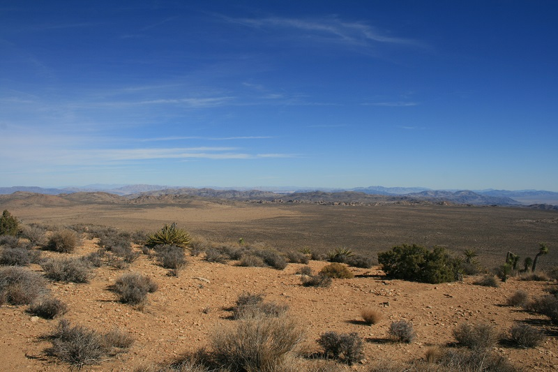 Panoramic view from Ryan Mountain, Joshua Tree National Park