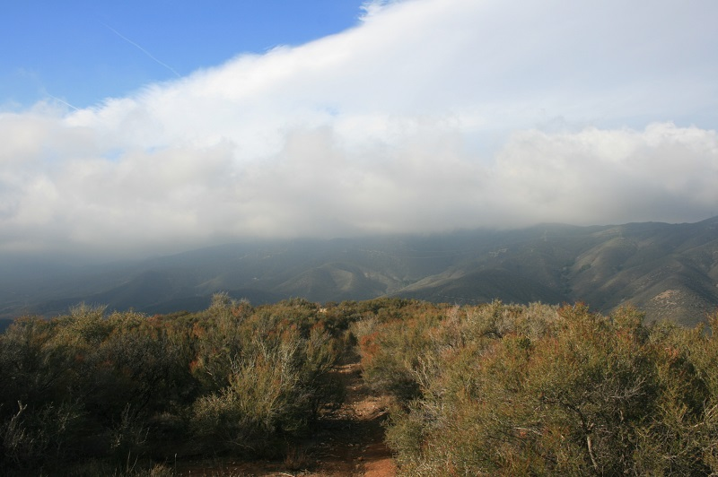 View from the Pacific Crest Trail, Sierra Pelona, Angeles National Forest, CA