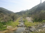 Stream in Pacoima Canyon, Angeles National Forest, CA