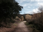 Creek Trail, Elsmere Canyon Open Space, Santa Clarita, CA