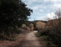 Creek Trail, Elsmere Canyon Open Space, Santa Clarita, CA