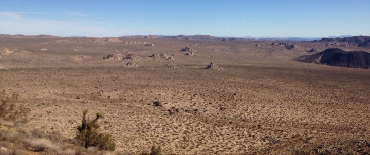 Eastern panorama from the Lost Horse Mine Loop Trail, Joshua Tree National Park, CA