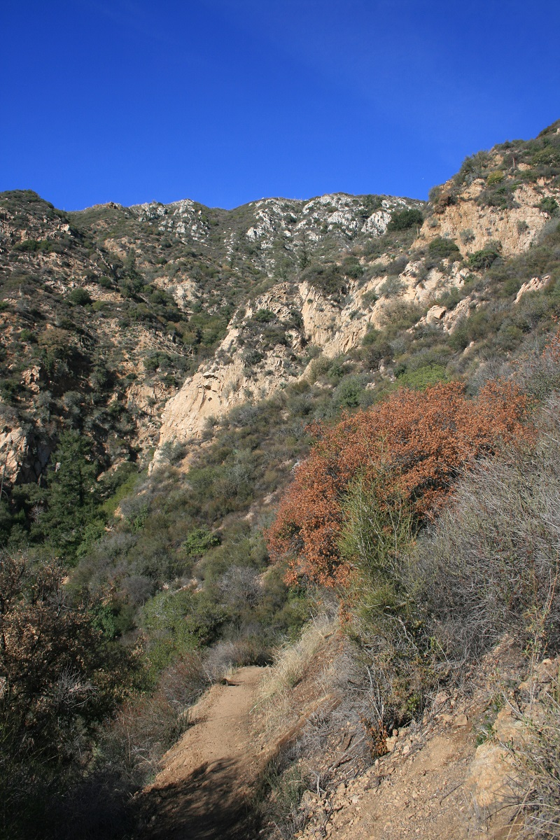 Descending the Castle Canyon Trail from Inspiration Point