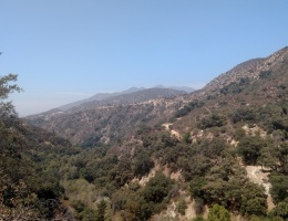 Sunset Ridge Trail, Angeles National Forest, CA