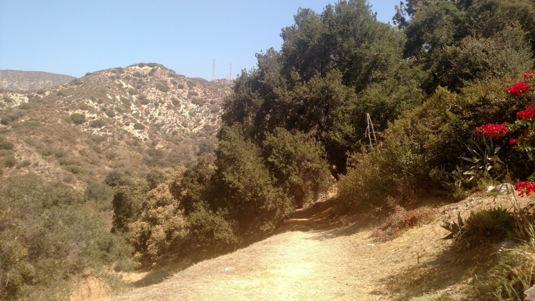El Prieto Canyon, San Gabriel Mountains