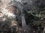 Footbridge on the Slaughterhouse Canyon Trail, Murrieta, CA