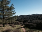 View from the Morgan Trail Head, Cleveland National Forest, Santa Ana Mountains, CA