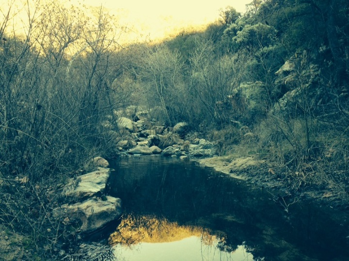 Crossing Agua Caliente Creek on the Pacific Crest Trail, San Diego County, CA