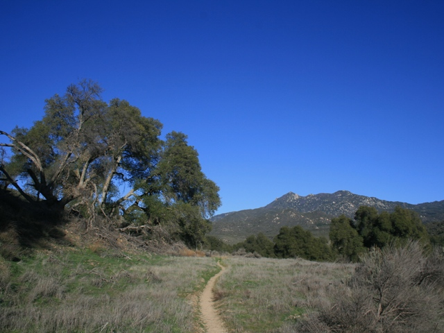 View of Hot Springs Mountain, highest point in San Diego County from the Pacific Crest Trail near Warner Springs, CA