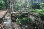 Footbridge, Ferndell, Griffith Park, Los Angeles