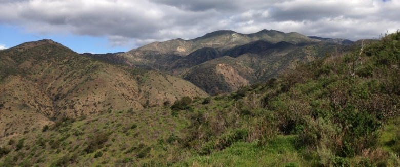 View of Santiago Peak from the Santiago Truck Trail, Cleveland National Forest, Orange County, CA