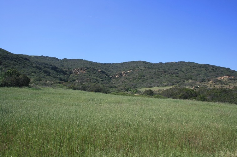 Butterfly Valley, Irvine Open Space Preserve, Orange County, CA