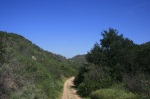 Shady Oaks Trail, Irvine Open Space Preserve, Orange County, CA