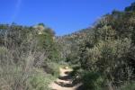 Horse Trail, Eaton Canyon, Pasadena, CA