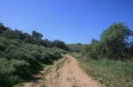 Horseshoe Loop Trail, Irvine Regional Park, Orange County, CA