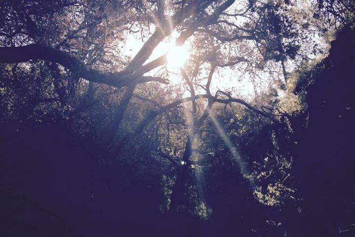 Dusk in San Dimas Canyon, Los Angeles County, CA