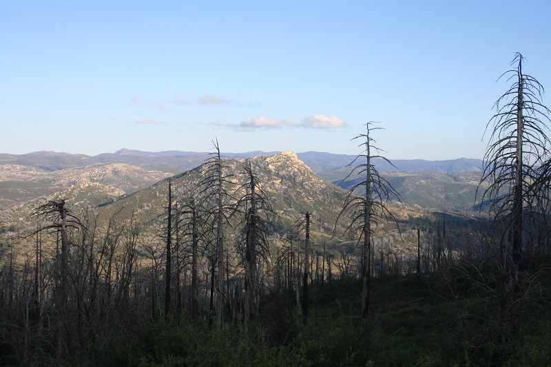 Stonewall Peak, Cuyamaca Rancho State Park, San Diego County, CA