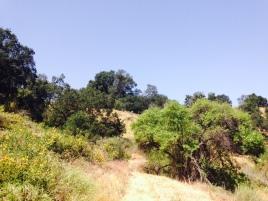 Oak Grove ascent