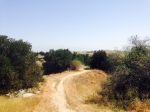 Oak Grove Trail, Chino Hills, CA