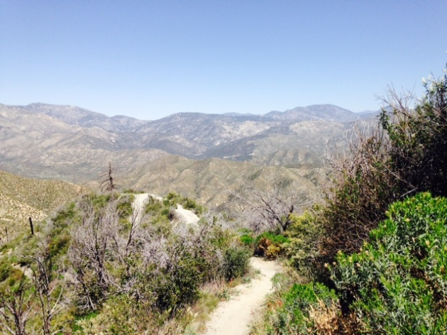 Trail to Strawberry Potrero, Angeles National Forest