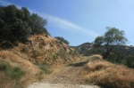 Fire road, Angeles National Forest, CA