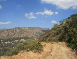 Fire road in the Angeles National Forest