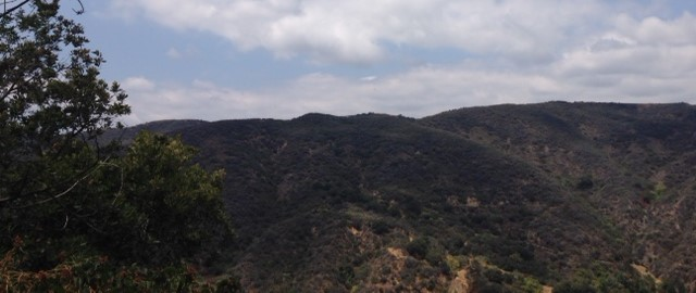 Temescal Ridge, Santa Monica Mountains, CA
