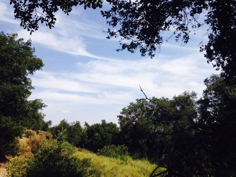 Thorpe Canyon, Rancho Cucamonga, CA