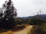 Service road, Rancho Cucamonga, CA