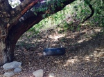 Tire swing, Thorpe Canyon, Rancho Cucamonga, CA