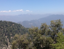 View of Mt. Baldy from the Mt. Wilson Toll Road