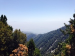 View from the Cosmic Cafe, Mt. Wilson, CA