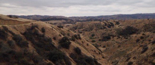 Oak Ridge Trail, Redlands, CA