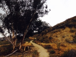 SanT Ascent