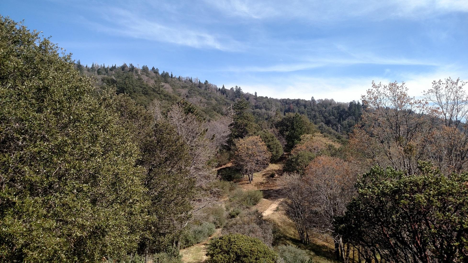 Pack Trail, Lake Arrowhead, CA