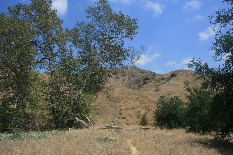 Corral Trail, Chino Hills State Park