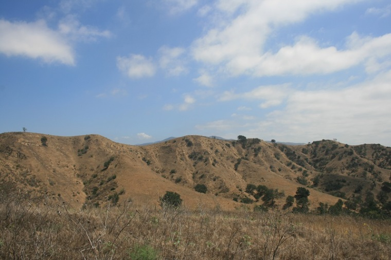 View from McLean Overlook, Chino Hills State Park